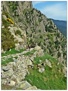 Camino de Nuria a Queralbs