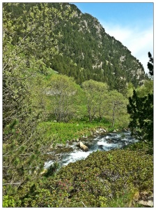 Río Nuria