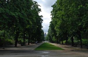 Interior del parque