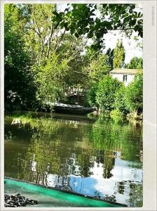 Paseo en barco en el Marais Poitevin