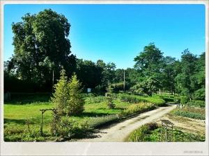 Vista matinal desde mi habitación. Con una vista así una solo puede desconectar. ;)